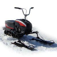 Снегомопед Тэсик
